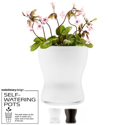 Awarded Design Vase: EVA SOLO SELF-WATERING FLOWER POT - White (Flower NOT included)