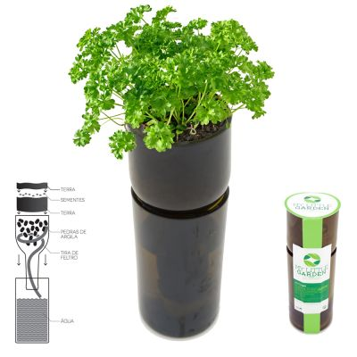 Self-Watering Vase w/ Grow KIT: ECO-BOTTLEKIT